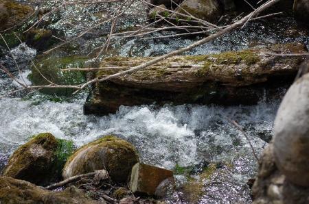 cemetery-stream