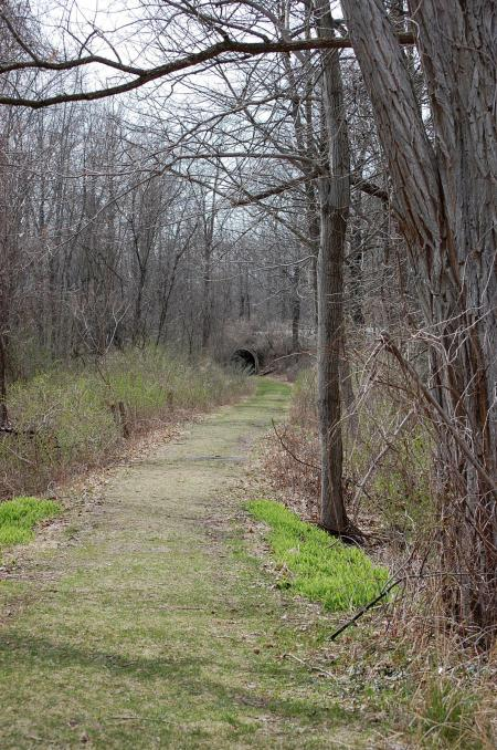 cemetery-tunnel1