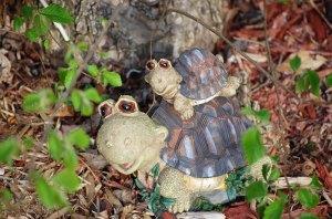 2-turtles