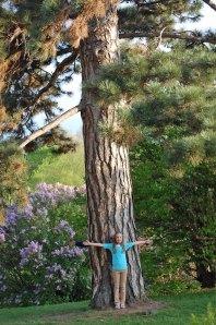 big-tree-little-erin