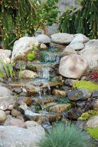 water-feature-coop-bldg