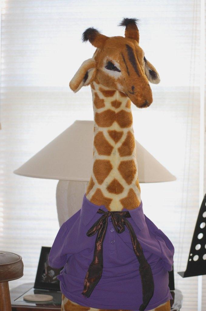 https://mockingbirdimagery.files.wordpress.com/2010/08/giraffe.jpg